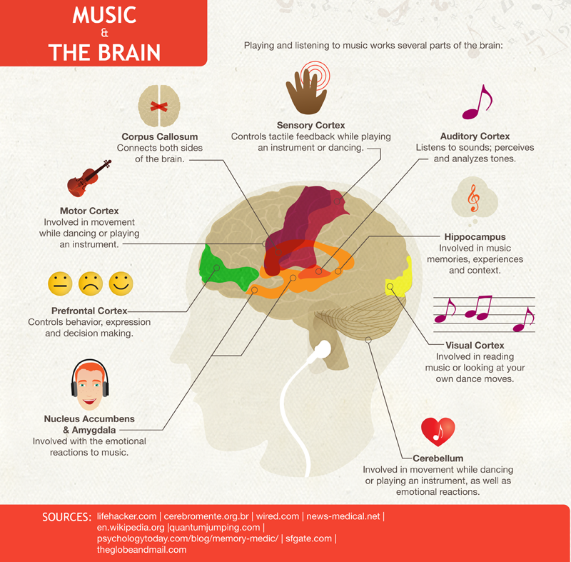 sq online your brain on music your brain on music