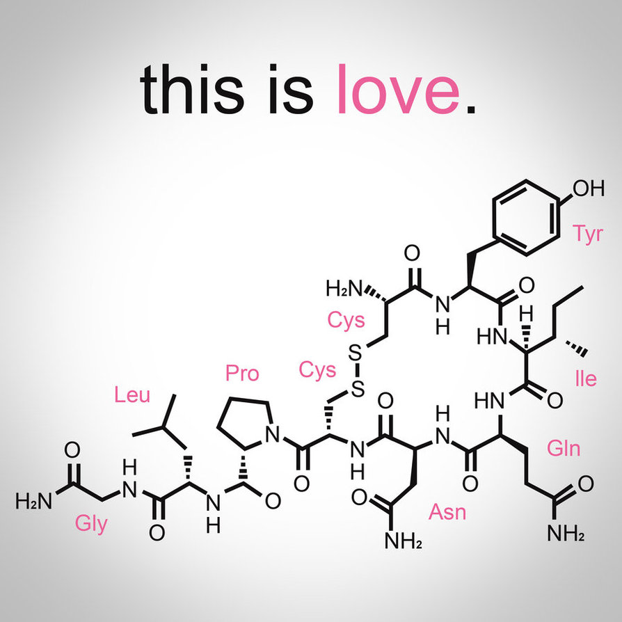 The molecular structure of oxytocin. Oxytocin is a hormone that aids in forming relationships. Source