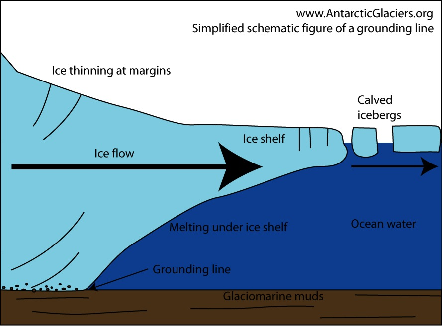 Figure 1: A display of how the Antarctic ice shelf is positioned and the location of the grounding line. Source.