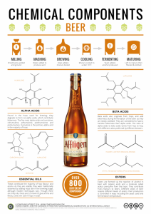 Chemical-Composition-Beer-724x1024