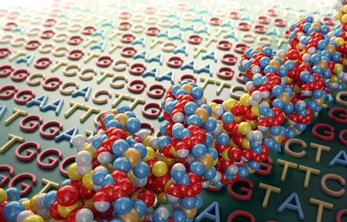 Nov19_2012_MarbleDNA_LongShortSeq1708196429