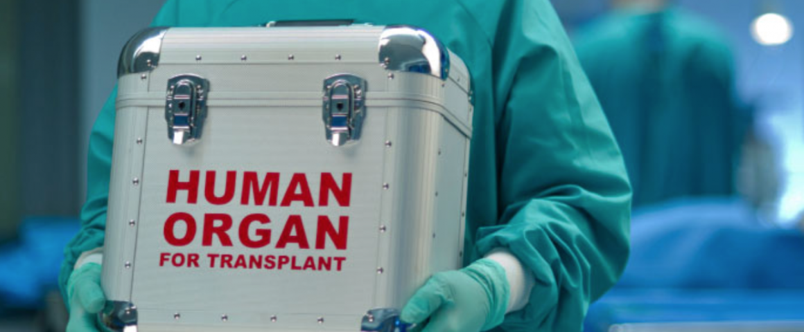 SQ Online / Looking into the Crystal Ball: The Future of Organ ...