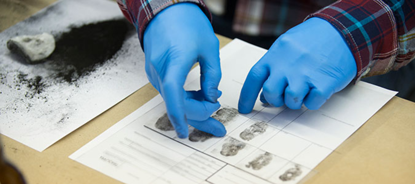 The face of forensic science is about to be changed by a study conducted in the UC San Diego School of Medicine.